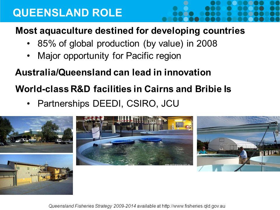QUEENSLAND ROLE Most aquaculture destined for developing countries 85% of global production (by value) in 2008 Major opportunity for Pacific region Australia/Queensland can lead in innovation World-class R&D facilities in Cairns and Bribie Is Partnerships DEEDI, CSIRO, JCU Queensland Fisheries Strategy 2009-2014 available at http://www.fisheries.qld.gov.au