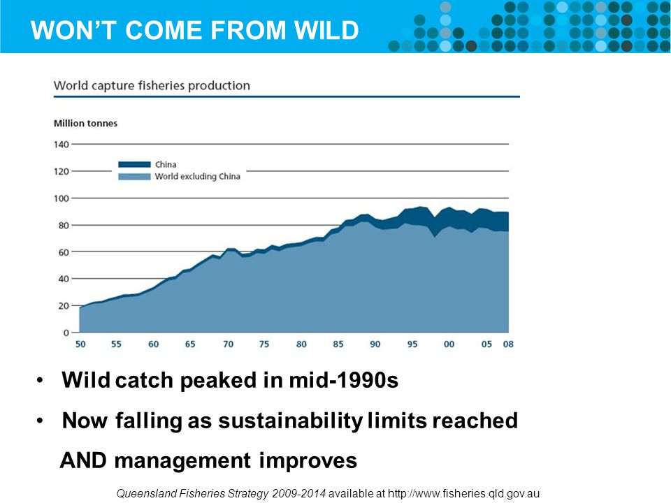 WON'T COME FROM WILD Wild catch peaked in mid-1990s Now falling as sustainability limits reached AND management improves Queensland Fisheries Strategy 2009-2014 available at http://www.fisheries.qld.gov.au
