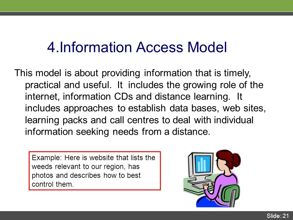 Slide: 21 4.Information Access Model This model is about providing information that is timely, practical and useful.