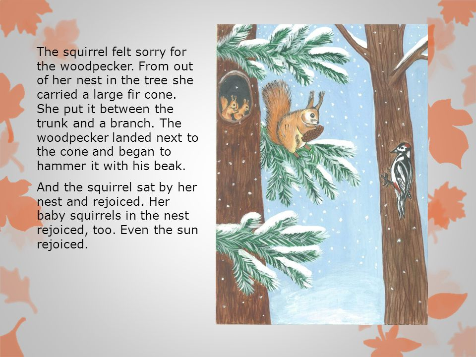 The squirrel felt sorry for the woodpecker.