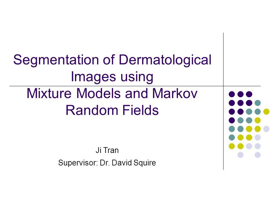 Segmentation of Dermatological Images using Mixture Models and Markov Random Fields Ji Tran Supervisor: Dr.