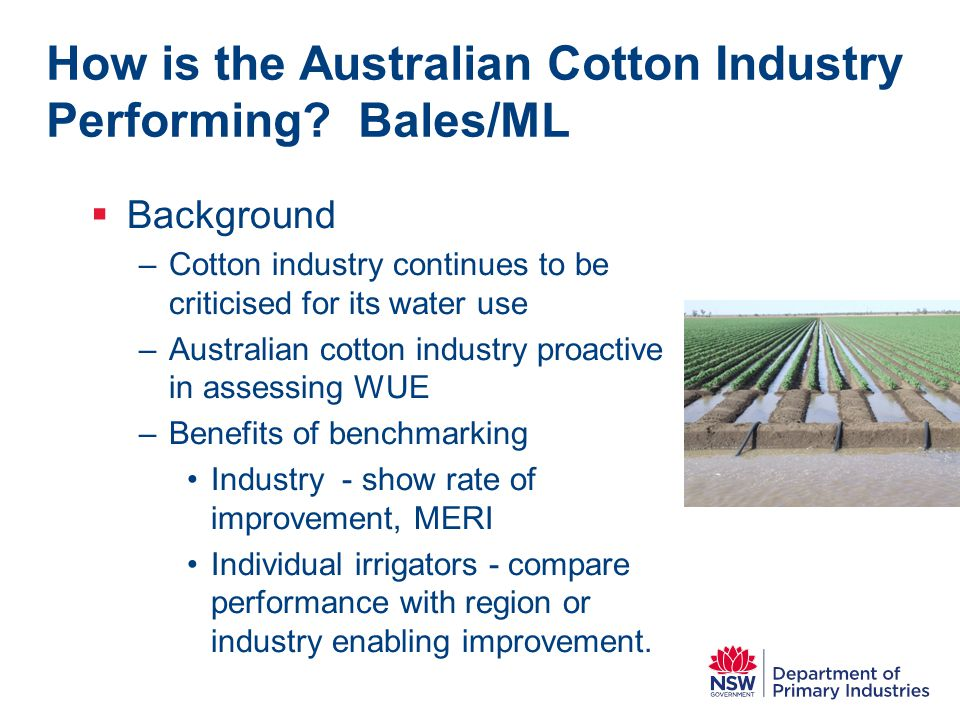 How is the Australian Cotton Industry Performing.