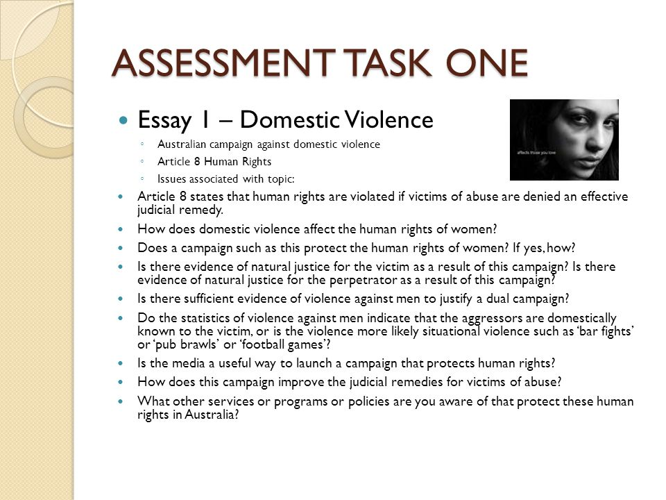 ASSESSMENT TASK ONE Essay 1 – Domestic Violence ◦ Australian campaign against domestic violence ◦ Article 8 Human Rights ◦ Issues associated with topi