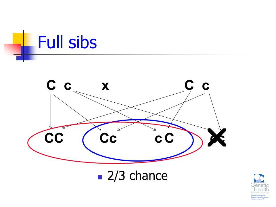 Full sibs 2/3 chance C cxC c  CCccCccC