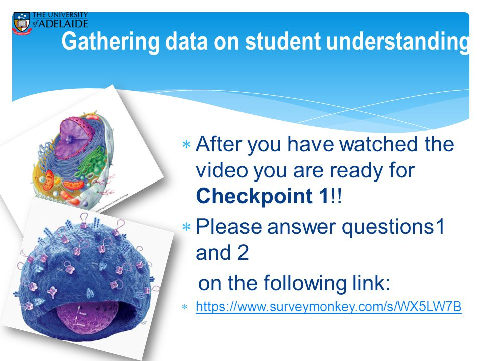 Gathering data on student understanding  After you have watched the video you are ready for Checkpoint 1!.