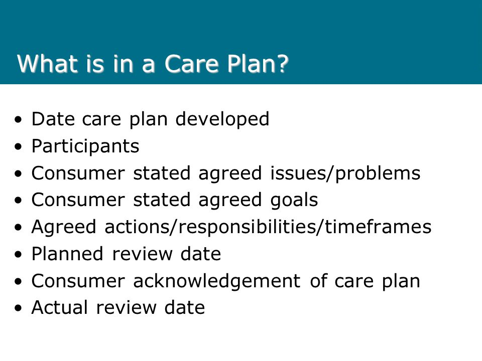 What is in a Care Plan? Date care plan developed Participants Consumer stated agreed issues/problems Consumer stated agreed goals Agreed actions/respo