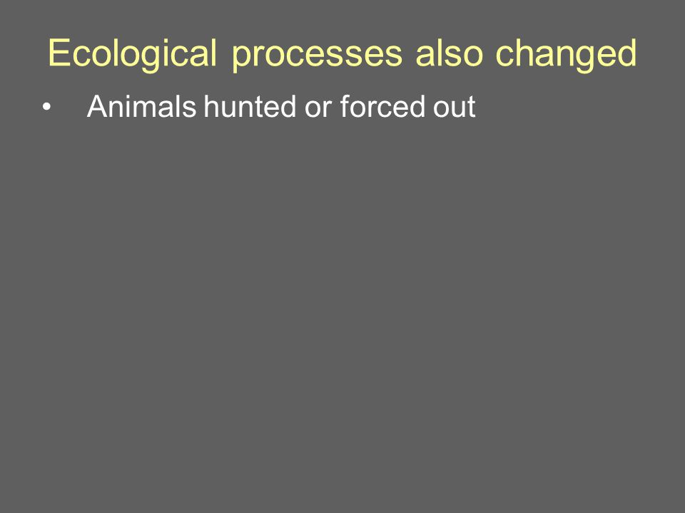 Ecological processes also changed Animals hunted or forced out
