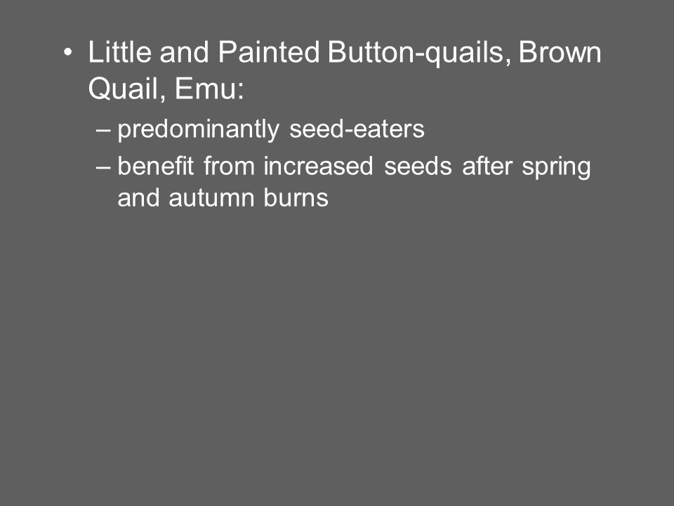 Little and Painted Button-quails, Brown Quail, Emu: –predominantly seed-eaters –benefit from increased seeds after spring and autumn burns