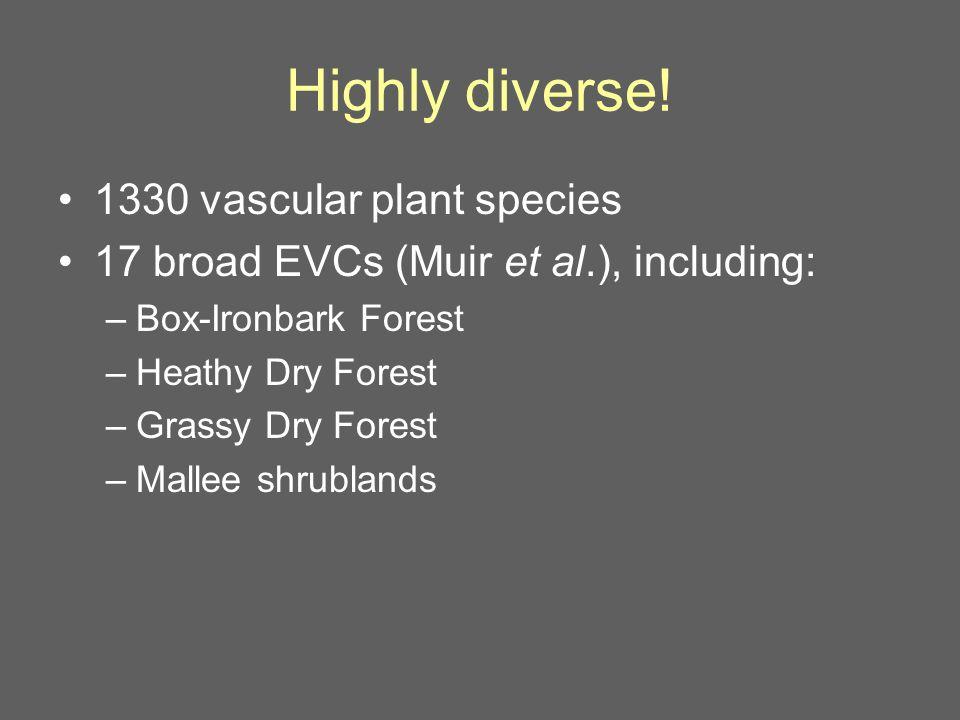 Swamp Rat Common Dunnart 12 of 43 mammal species no longer in N.C. region (Menkhorst 2010)