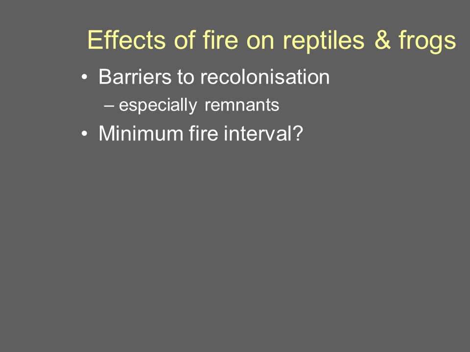 Effects of fire on reptiles & frogs Barriers to recolonisation –especially remnants Minimum fire interval?