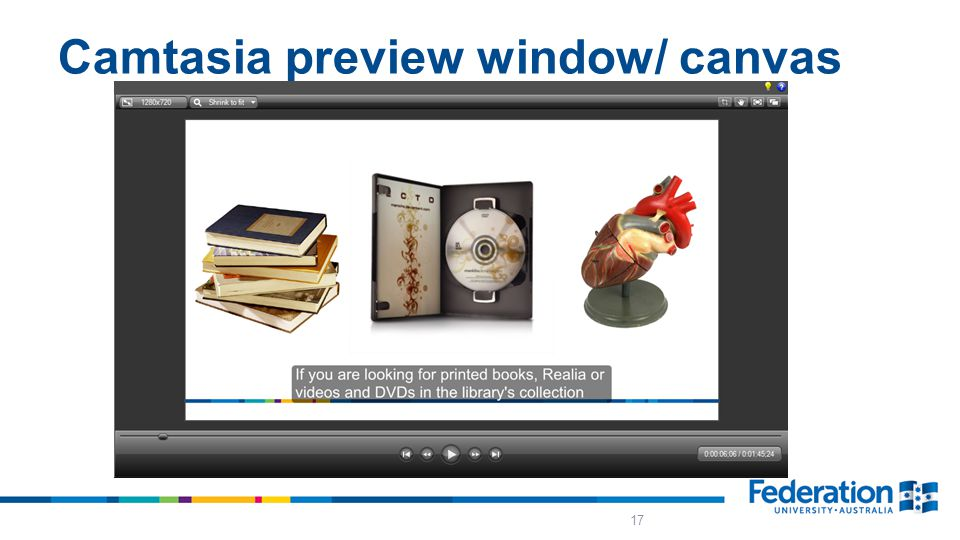 Camtasia preview window/ canvas 17