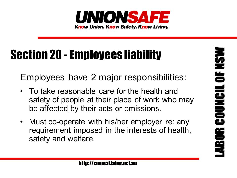 LABOR COUNCIL OF NSW http://council.labor.net.au Section 20 - Employees liability Employees have 2 major responsibilities: To take reasonable care for the health and safety of people at their place of work who may be affected by their acts or omissions.