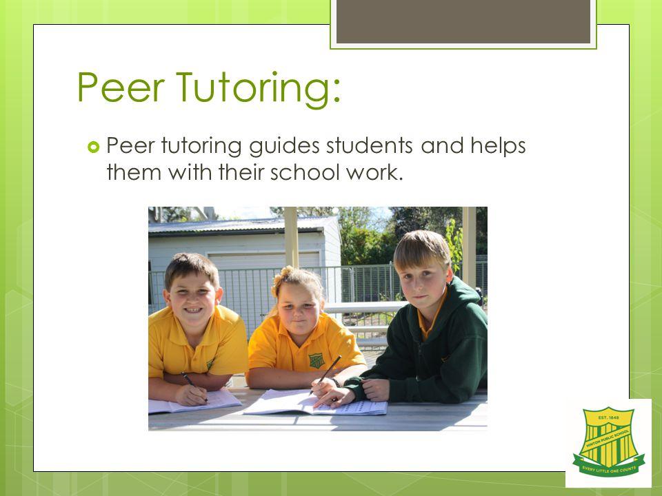 Peer Tutoring:  Peer tutoring guides students and helps them with their school work.