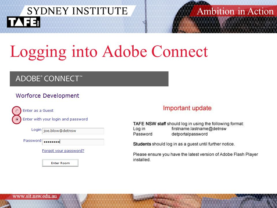 Ambition in Action www.sit.nsw.edu.au Logging into Adobe Connect