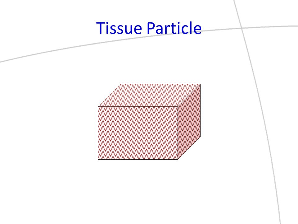 Tissue Particle