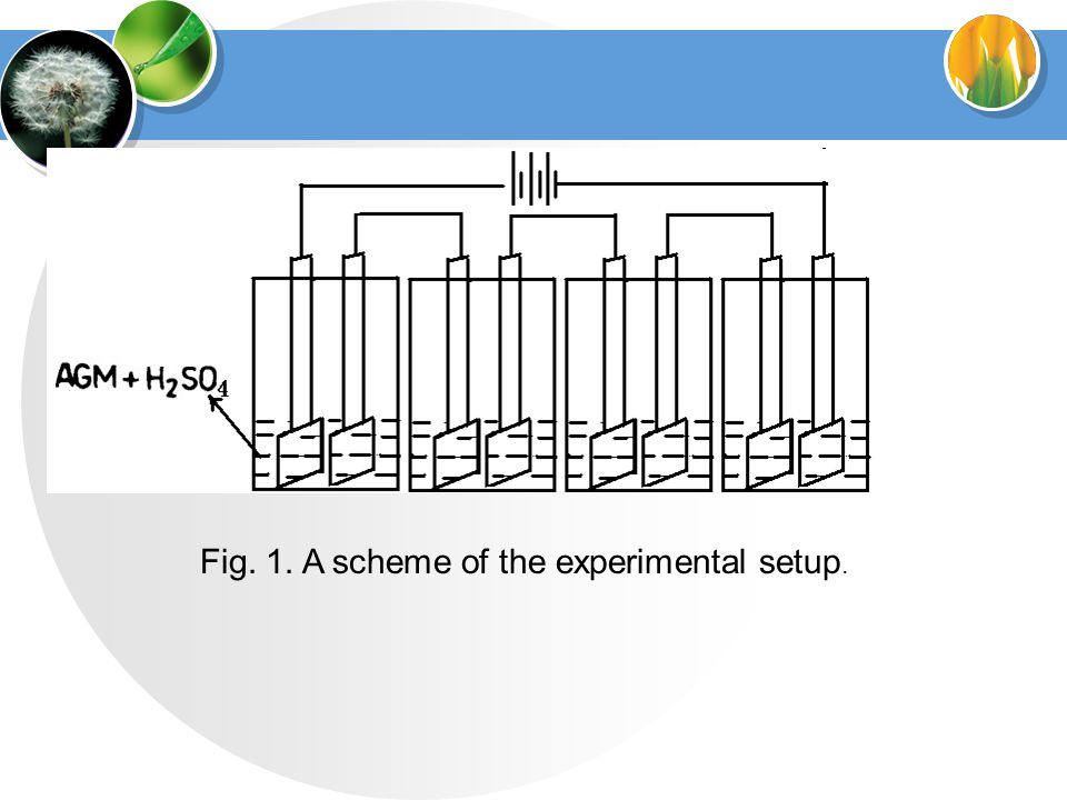 Fig. 1. A scheme of the experimental setup.