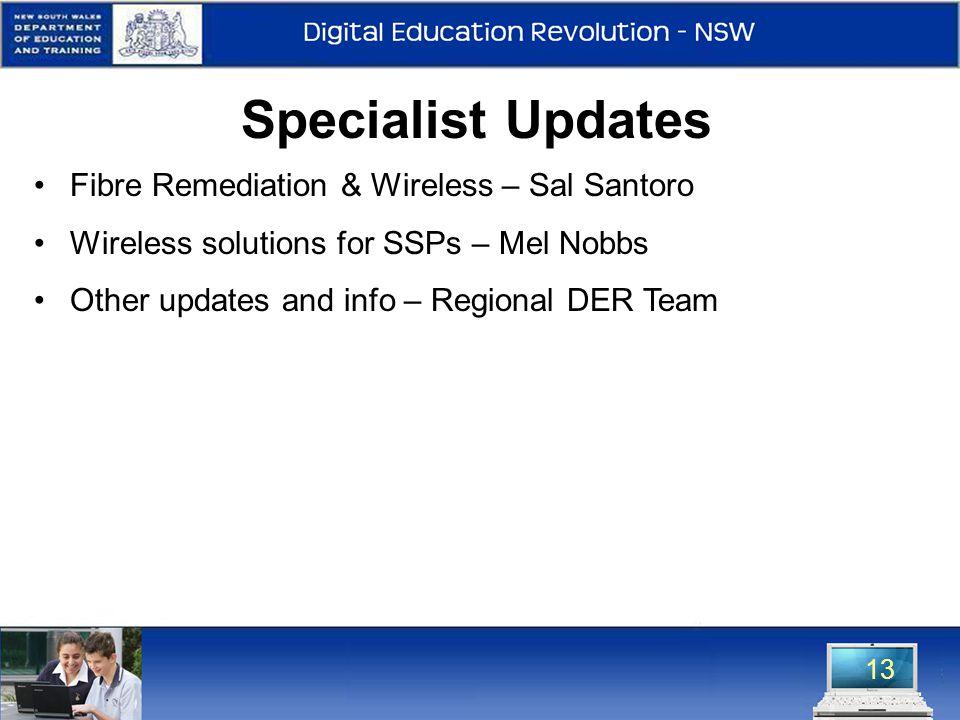 13 Specialist Updates Fibre Remediation & Wireless – Sal Santoro Wireless solutions for SSPs – Mel Nobbs Other updates and info – Regional DER Team