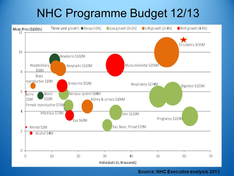 NHC Programme Budget 12/13 Source; NHC Executive analysis 2013