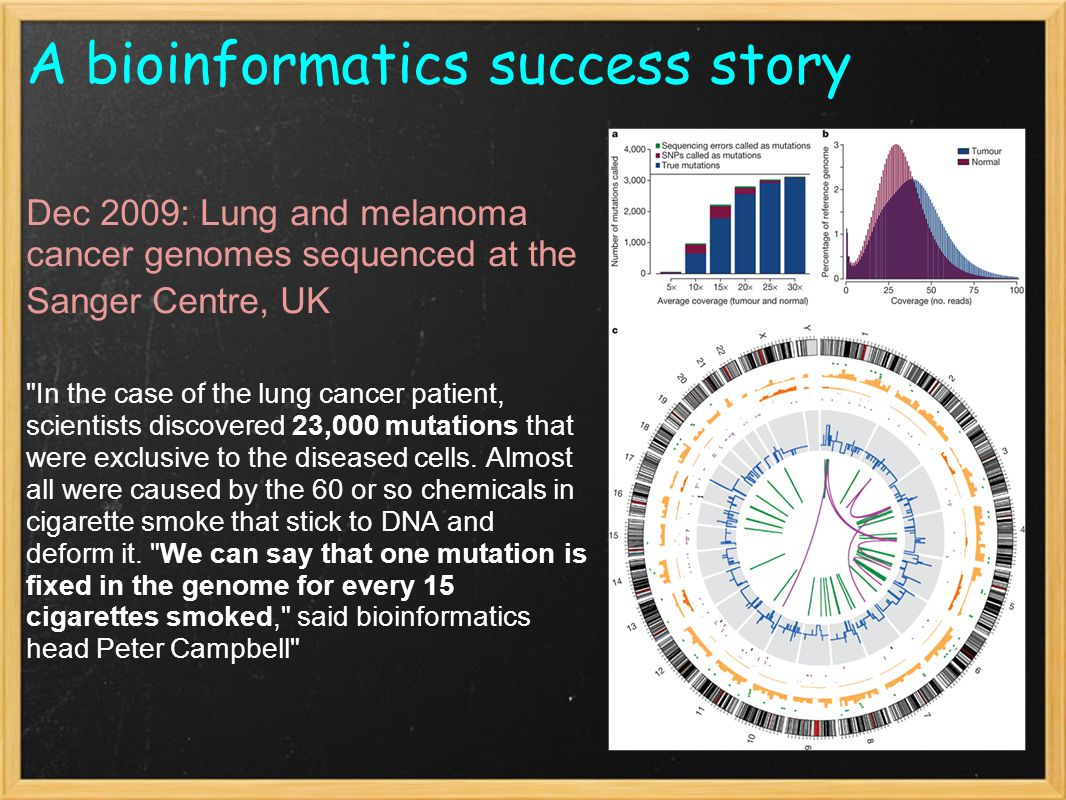 A bioinformatics success story Dec 2009: Lung and melanoma cancer genomes sequenced at the Sanger Centre, UK In the case of the lung cancer patient, scientists discovered 23,000 mutations that were exclusive to the diseased cells.