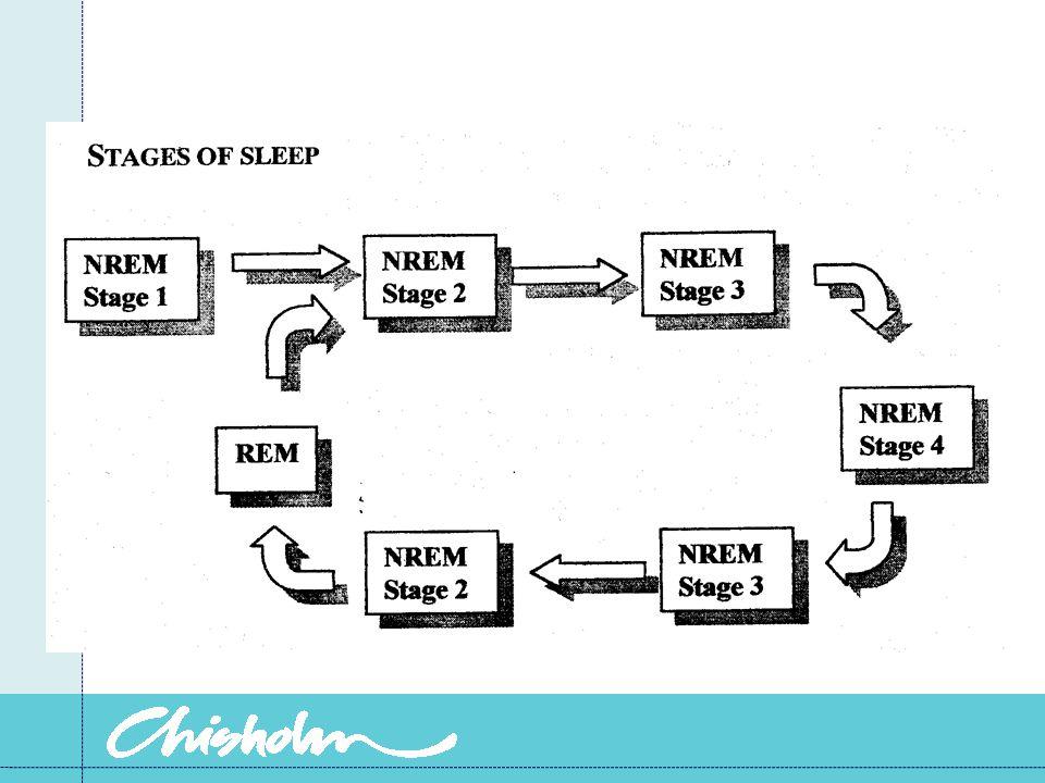 Sleep stages