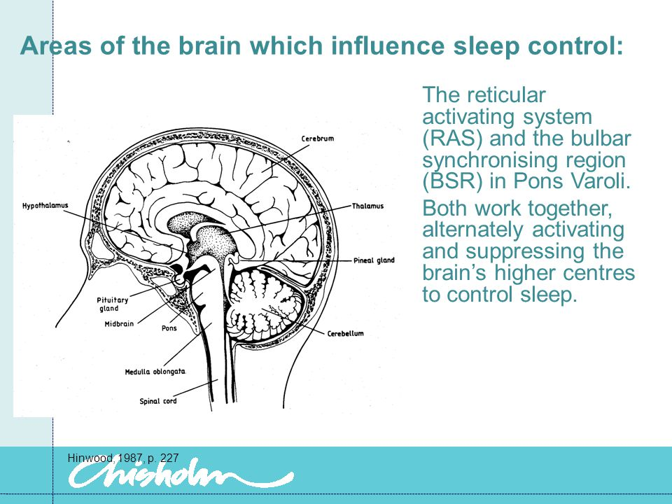 Circadian Rhythms Relates to the behavioral and biological activity in 24 hrs.