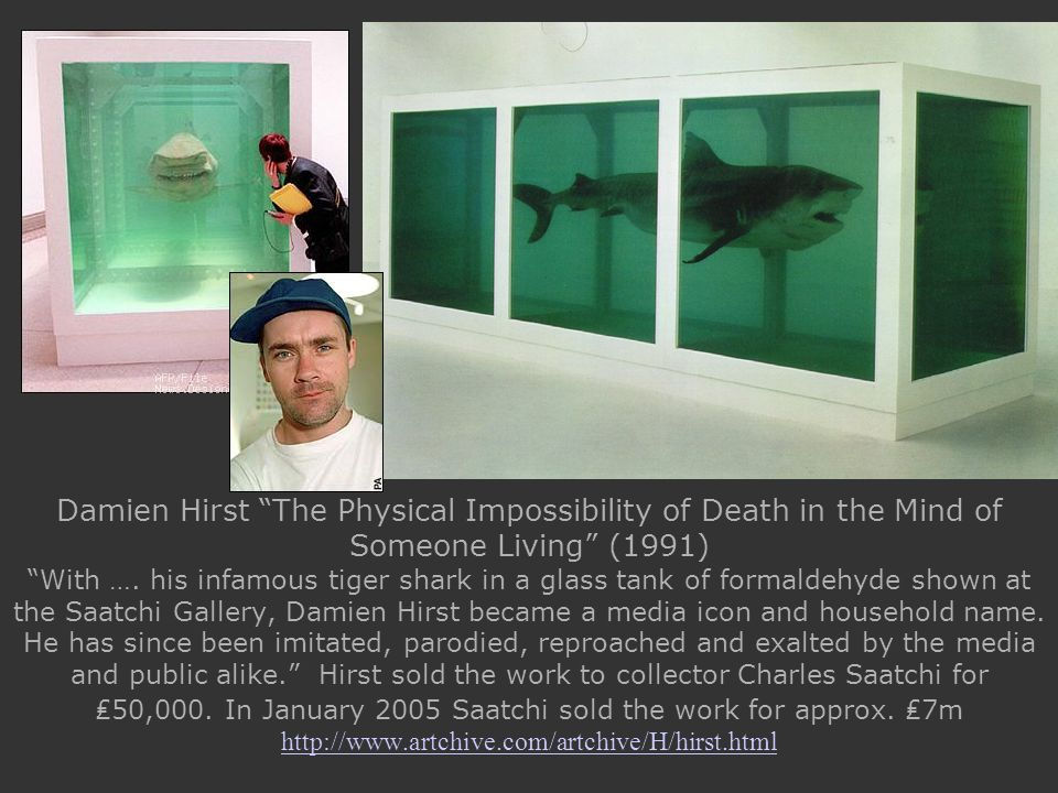 Damien Hirst The Physical Impossibility of Death in the Mind of Someone Living (1991) With ….