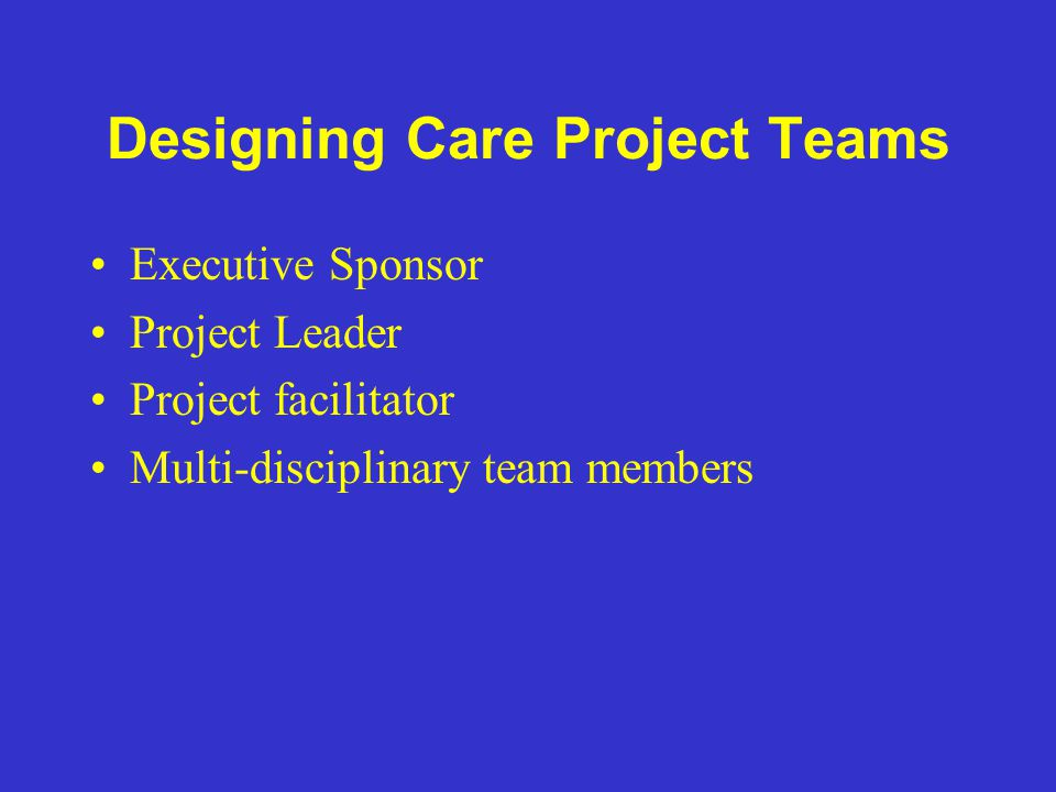 Designing Care Project Teams Executive Sponsor Project Leader Project facilitator Multi-disciplinary team members