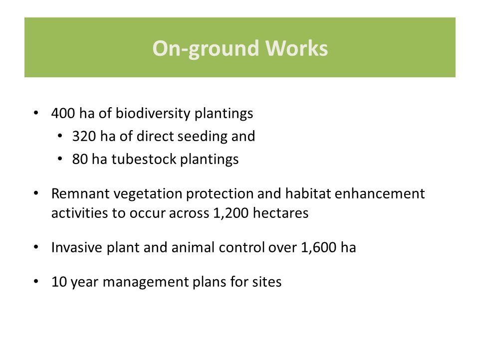 400 ha of biodiversity plantings 320 ha of direct seeding and 80 ha tubestock plantings Remnant vegetation protection and habitat enhancement activiti