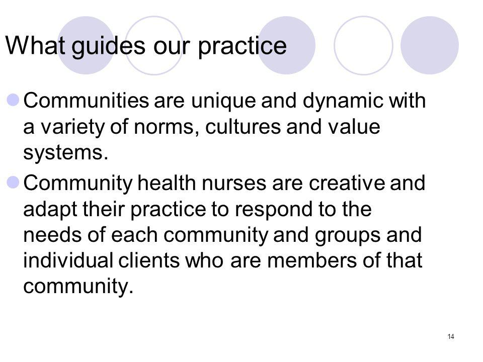 14 What guides our practice Communities are unique and dynamic with a variety of norms, cultures and value systems.