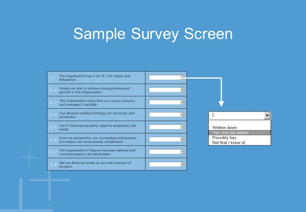Sample Survey Screen