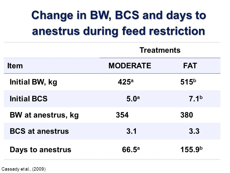 Treatments ItemMODERATEFAT BW at anestrus, kg 354 380 BCS at anestrus 3.1 3.3 BW at 1 st estrous cycle, kg 455 a 513 b BCS at 1 st estrous cycle 5.2 a 6.0 b Days to 1 st estrous cycle 67.7 78.9 Change in BW, BCS and days to 1 st estrous cycle after initiation of feed repletion Cassady et al., (2009)