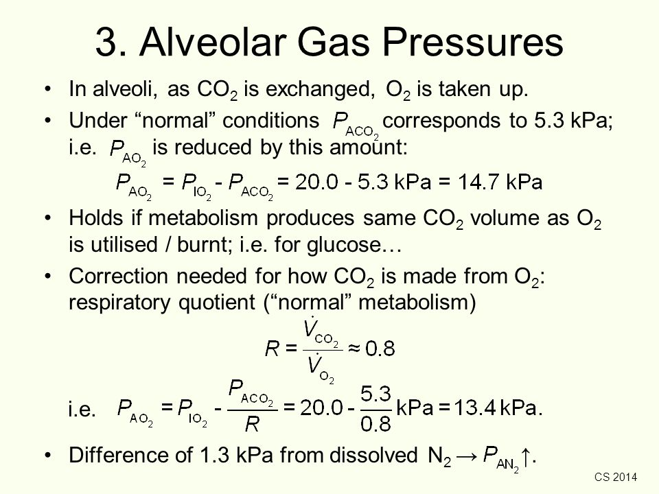 "CS 2014 3. Alveolar Gas Pressures In alveoli, as CO 2 is exchanged, O 2 is taken up. Under ""normal"" conditions corresponds to 5.3 kPa; i.e. is reduced"