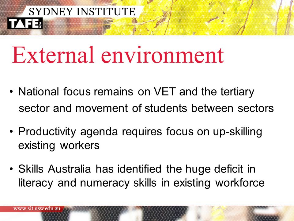 External environment National focus remains on VET and the tertiary sector and movement of students between sectors Productivity agenda requires focus on up-skilling existing workers Skills Australia has identified the huge deficit in literacy and numeracy skills in existing workforce