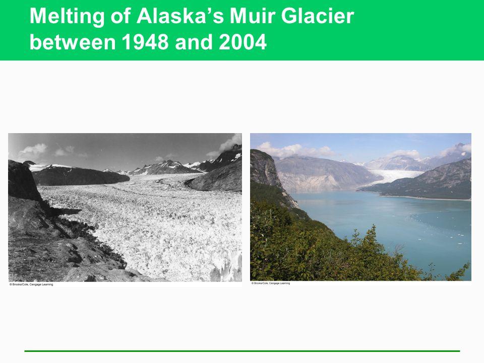 Melting of Alaska's Muir Glacier between 1948 and 2004