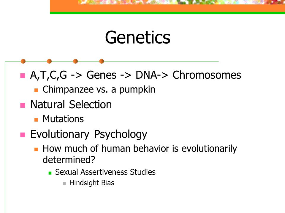 Genetics A,T,C,G -> Genes -> DNA-> Chromosomes Chimpanzee vs. a pumpkin Natural Selection Mutations Evolutionary Psychology How much of human behavior