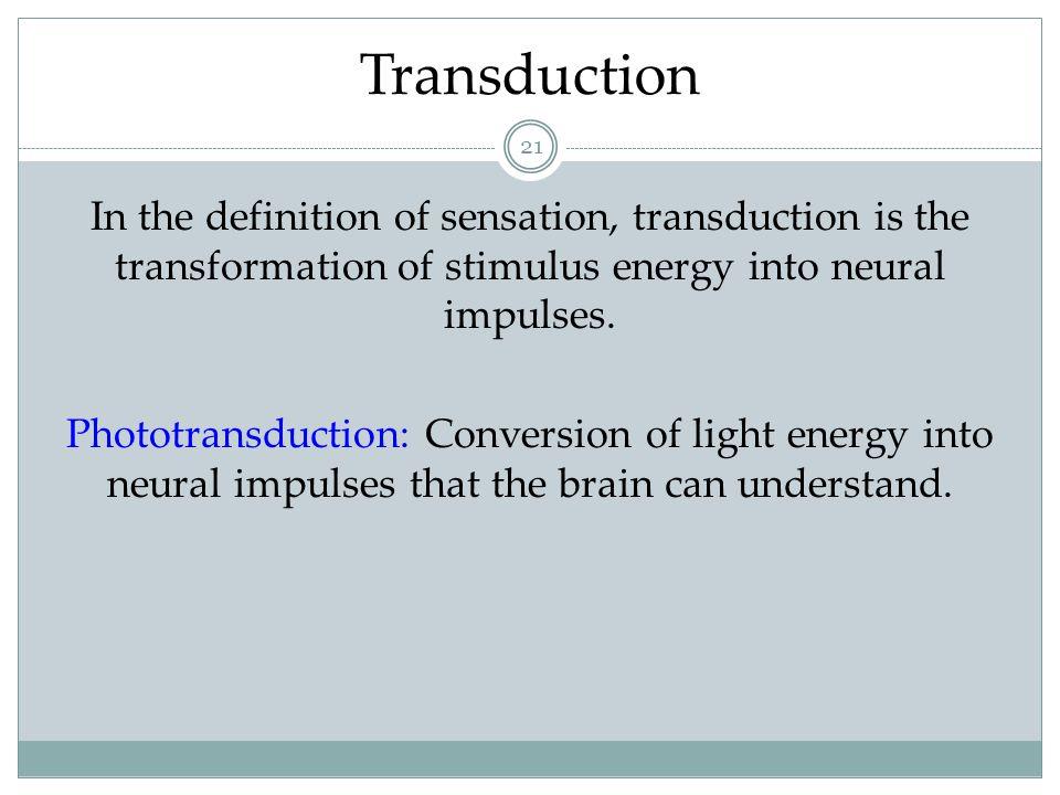 The Stimulus Input: Light Energy 22 Visible Spectrum Both Photos: Thomas Eisner