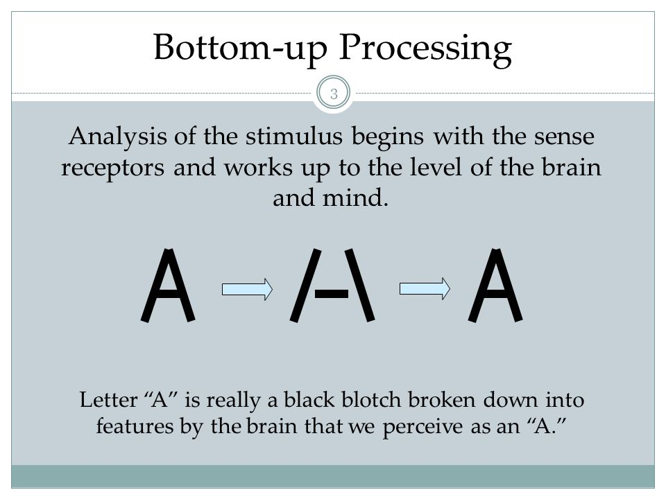 Top-Down Processing 4 Information processing guided by higher-level mental processes as we construct perceptions, drawing on our experience and expectations.