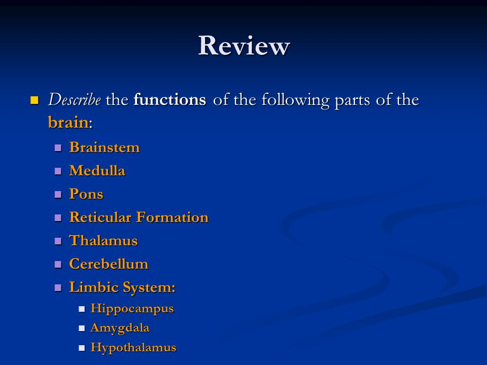 Review Describe the functions of the following parts of the brain: Describe the functions of the following parts of the brain: Brainstem Brainstem Med