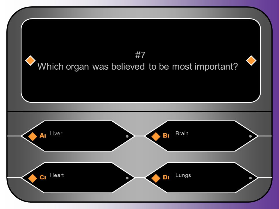 A:B: LiverBrain #7 Which organ was believed to be most important? C:D: HeartLungs