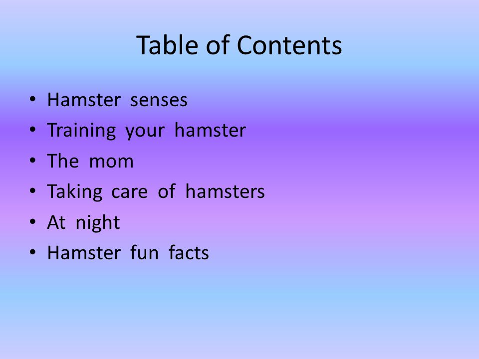Table of Contents Hamster senses Training your hamster The mom Taking care of hamsters At night Hamster fun facts