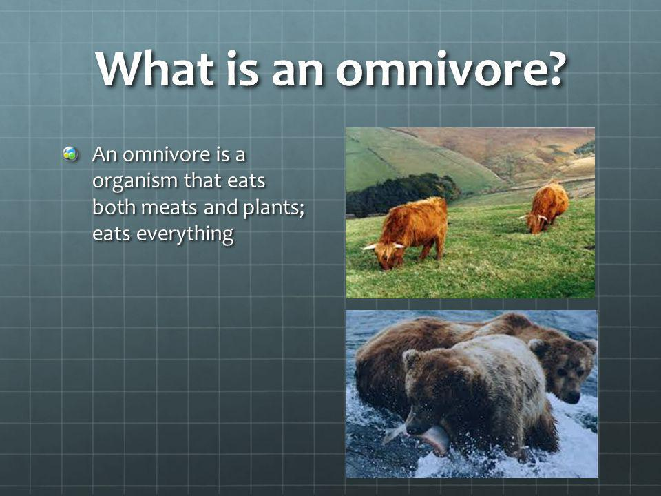 What is an omnivore? An omnivore is a organism that eats both meats and plants; eats everything