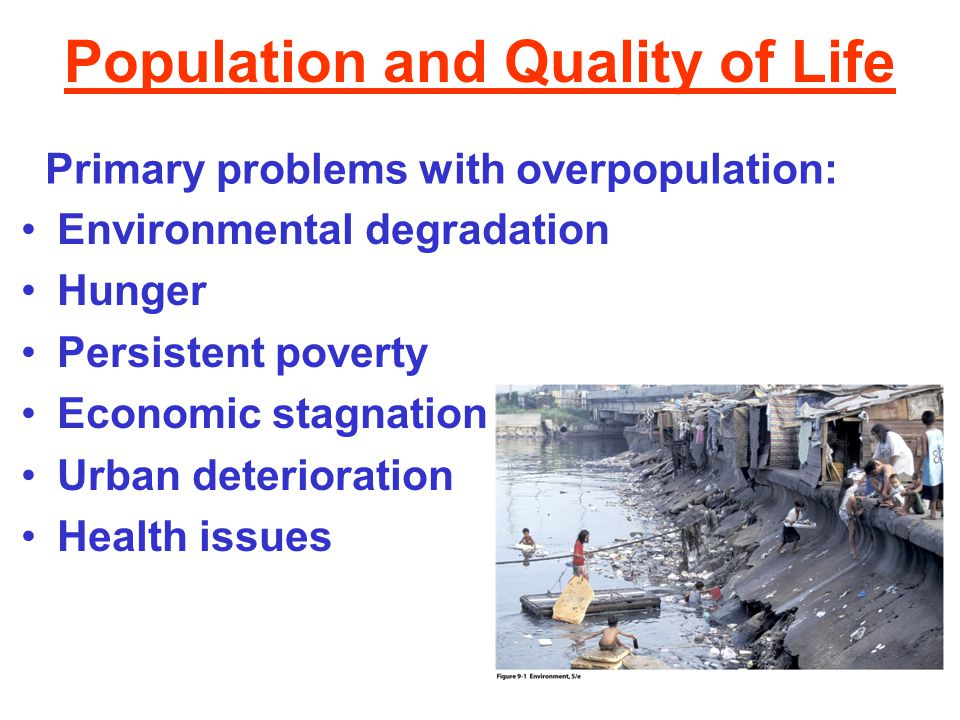 Population and Quality of Life Environmental degradation Hunger Persistent poverty Economic stagnation Urban deterioration Health issues Primary probl
