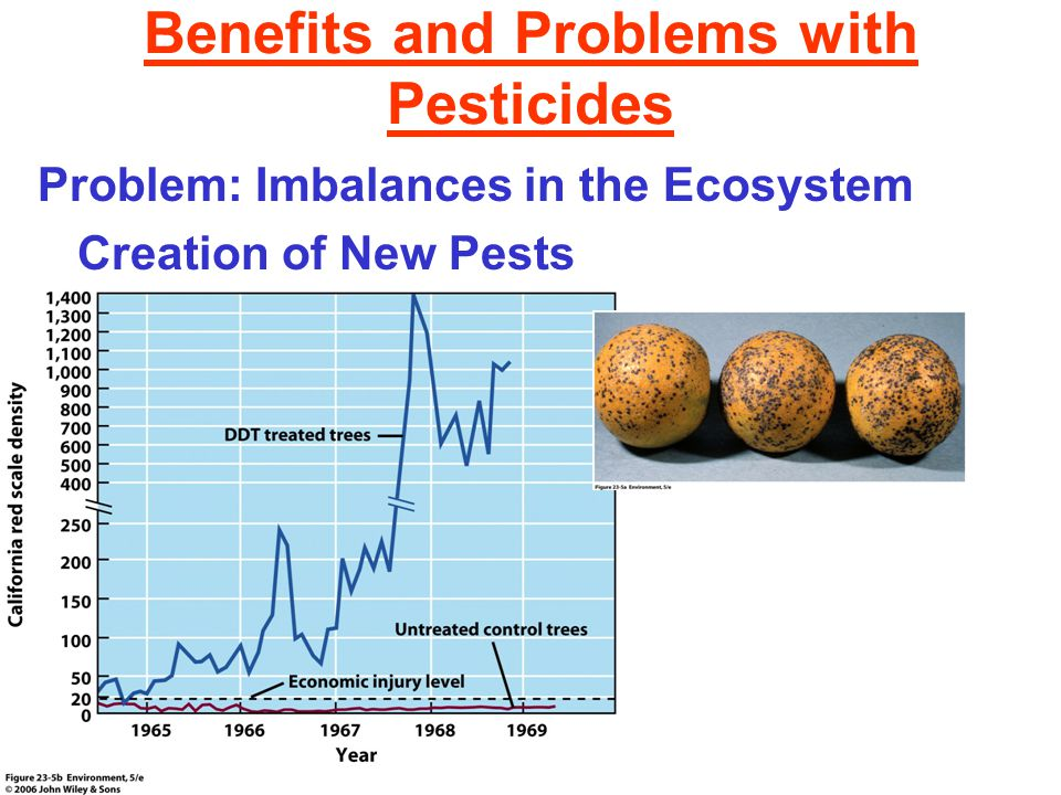 Benefits and Problems with Pesticides Problem: Imbalances in the Ecosystem Creation of New Pests