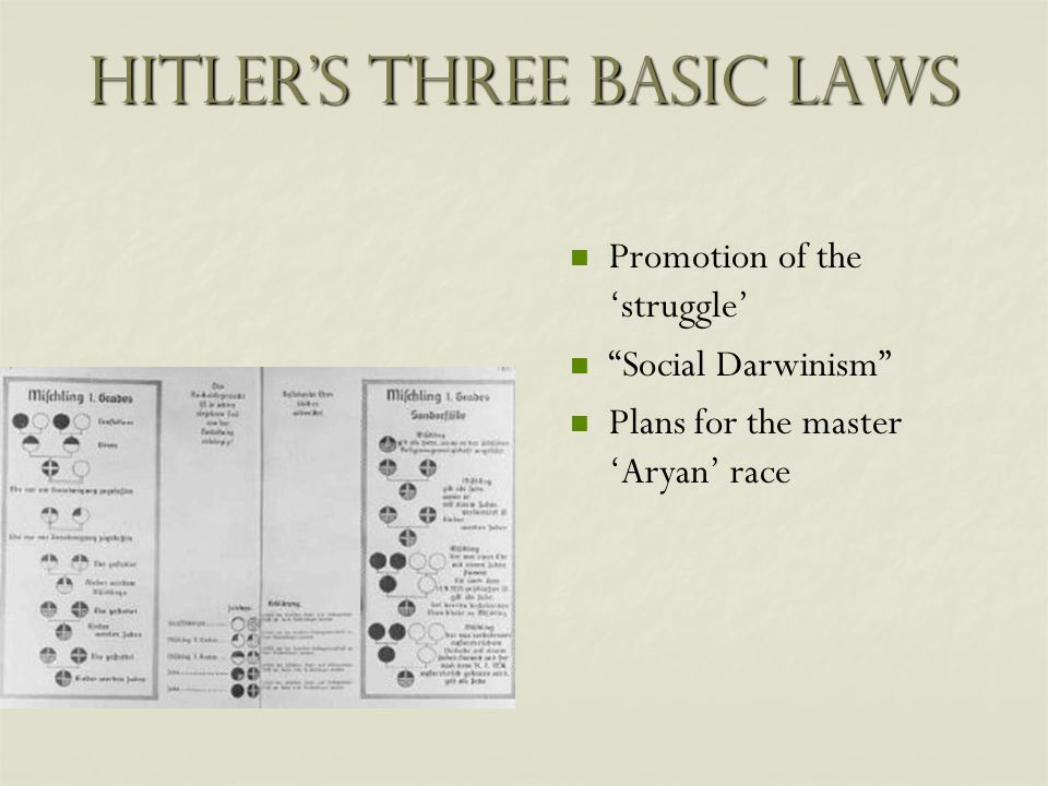 Hitler's Three Basic Laws Promotion of the 'struggle' Social Darwinism Plans for the master 'Aryan' race