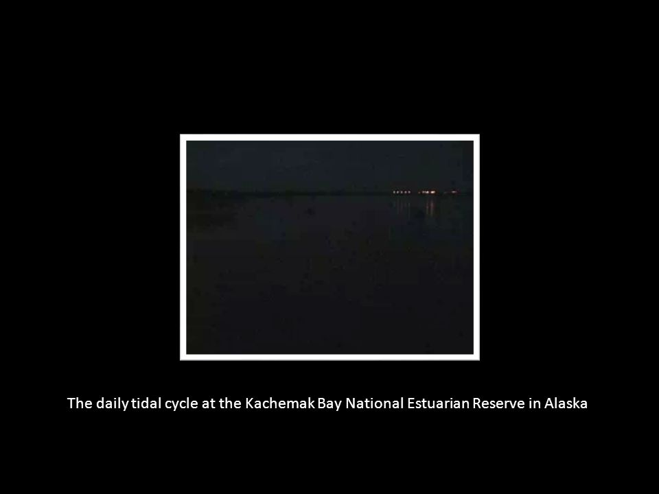 The daily tidal cycle at the Kachemak Bay National Estuarian Reserve in Alaska