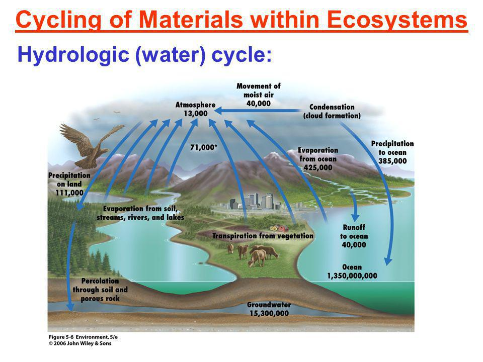 Cycling of Materials within Ecosystems Hydrologic (water) cycle: