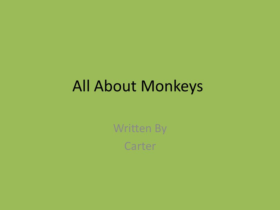 All About Monkeys Written By Carter