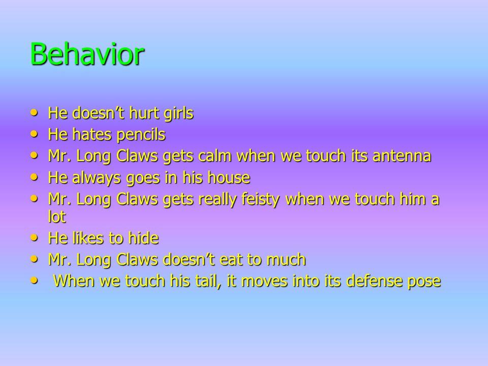 Behavior He doesn't hurt girls He doesn't hurt girls He hates pencils He hates pencils Mr.