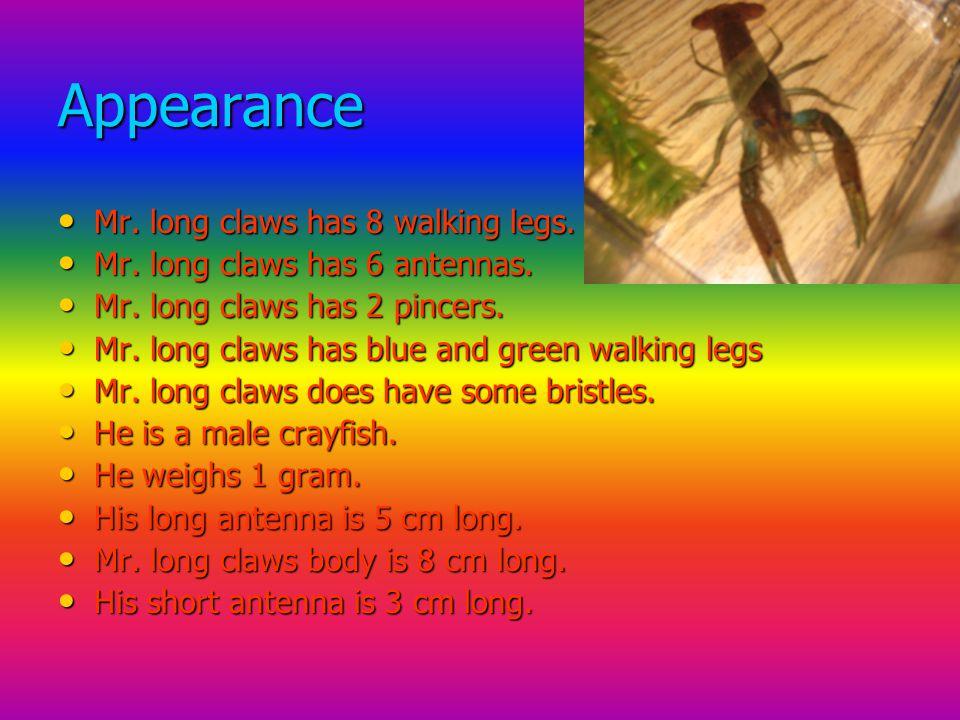 Appearance Mr. long claws has 8 walking legs. Mr.