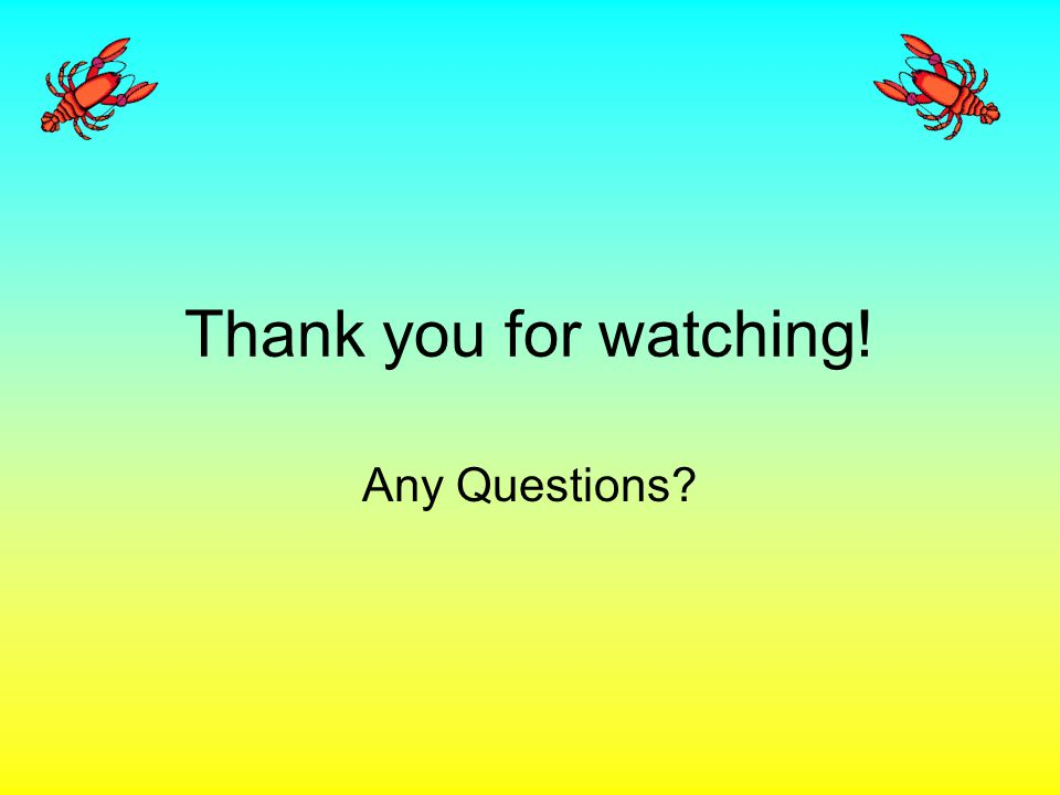 Thank you for watching! Any Questions